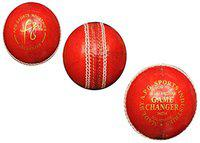 APG GAME CHANGER Leather Cricket Ball