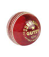 SS Gutsy Leather Cricket Ball, Senior Pack of 6