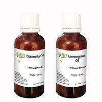 Allin Exporters Citronella Oil, 30ml with Lemongrass Oil, 30ml