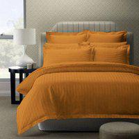 AVI 300 TC Stripes Cotton Bed Sheet with 2 Pillow Cover, Golden (100 * 116in)