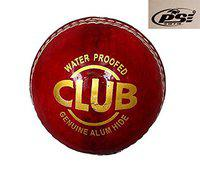 PSE Priya Sports PSESIMPLERED4 Leather OneDay Cricket Ball (Red)