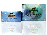 Pure Roots Makeup Oxy Facial Kit Oxy Bleach Cream (224 g)
