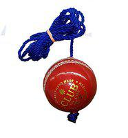 PSE Leather Practice Hanging Cricket Ball, Size Standard, (Red)