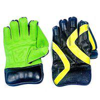 Acorn Cricket Wicket Keeping Gloves - Best Quality (Pig-Pag Model)