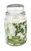 Eternia Jasmine Fantasy Scented Aromatherapy Candle with Glass Jar Luxury Candle for Home Use - Burn Time 80 Hours