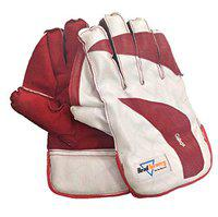 HeadTurners Cricket Wicket Keeping Gloves - College Colour May Vary College,Mens