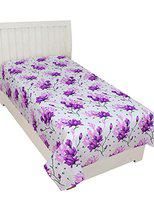 BSB Home Microfibre Glace Cotton 120 TC Bedsheet with Pillow Covers - Purple