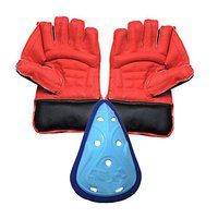 JetFire College Wicket Keeping Gloves with Abdominal Guard Cricket Kit