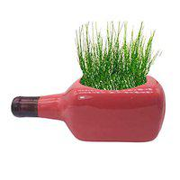 India Meets India Bottle Shaped Ceramic Planter Flower Pot Indoor Outdoor Planter Handicraft by Awarded Indian Artisan (Red) - 8 x3 inch