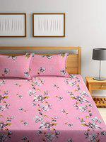 Cortina 104 TC Cotton Double Bedsheet with Two Pillow Cover - Pink
