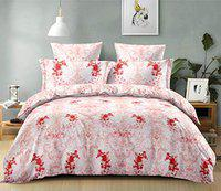 Florida 240 TC 100% Cotton King Size Double Bedsheet with 2 Pillow Covers (Red, King)