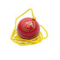 APG Red Leather Cricket Hanging Ball for Practice and Bat Knocking with (7 ft Approx) Rope - Pack of 1 Ball
