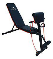 DOLPHY Adjustable Weight Bench for Full Body Workout, Foldable Flat/Incline/Decline Home Gym Exercise sit up Bench (red and black)