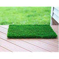 Eurotex Artificial Grass Carpet Mat for Covering Balcony, Lawn, Door(1ft x 2ft)
