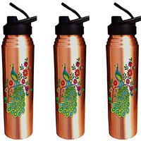 Evergrow Copper Printed Bottles for Water 1 Litre with Sipper Combo Set of 3 Bottle.
