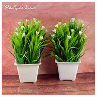 Crystu Artificial Indoor Plants with Pot | Artificial Tree Bonsai Plant with Pot | Bonsai Tree & Plant | Bonsai Tree for Indoor Office Home Decor Showpiece Pack of Combo 2 pc