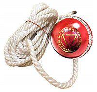 HeadTurners Leather Cricket Shot Practice Hanging Ball, String Cricket Ball and Knocking Cricket Ball with Rope