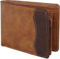 Deniza Men Multicolor Artificial Leather Wallet(10 Card Slots)