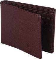 Deniza Men Tan Artificial Leather Wallet(10 Card Slots)