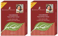 Shahnaz Husain Colourveda Natural Hair Colour Burgundy Hair Color(Burgundy)