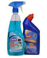 DOC HIM TOILE CLEANER + GLASS & MULTI-SURFACE CLEANER Liquid Toilet Cleaner Regular(2 x 250 ml)