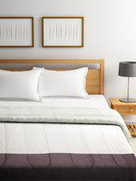 SPACES White & Brown Colourblocked AC Room 150 GSM Double Bed Quilt
