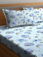 SWHF Blue Floral 180 TC Cotton 1 Queen Bedsheet with 2 Pillow Covers
