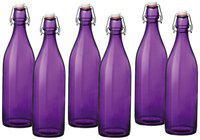 Treo 1000 ml Glass Purple Water Bottles - Set of 1