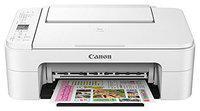 Canon TS 3177S Multi-Function Inkjet Printer