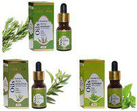 Indus Valley Essential Oil Combo Kit For Reduces Acne And Hyper Pigmentation(Rosemary plus Peppermint plus Eucalyptus) - Set Of 3