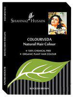 Shahnaz Husain Colourveda Natural Hair Colour - Blackish Brown 100 gm