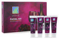 Astaberry Wine Facial Kit - Mini 52 g