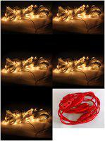 GLOWTRONIX Pack of 5 Warm White Color Festival Decorative Rice Light 5 Meter 15 Bulb