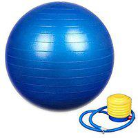 Wolphy Anti Burst Gym Ball With Pump (85 Mm)