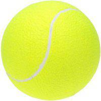 Tahiro Green Cricket Balls - Pack Of 1