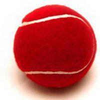 Tahiro Red Tennis Balls - Pack Of 1