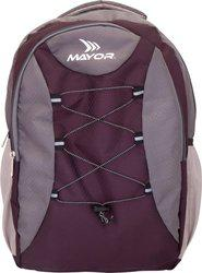 Mayor Bolt 25 L Laptop Backpack(Grey)
