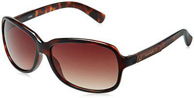 Fastrack Butterfly Sunglasses (P161BR1F)
