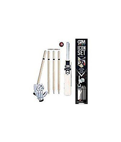 GM Icon Cricket Set Size-4 (with Gloves)
