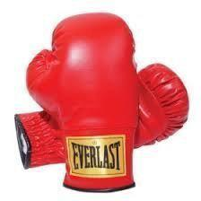 Everlast Laceless Training Boxing Gloves Size Small 1 Pair