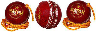 PSE Priya Sports Unisex Leather Practice Cricket Ball- Pack Of 3 Red