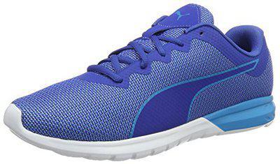 Puma Men's Vigor True Blue and Blue Danube Multisport Training Shoes - 11 UK/India (46 EU)