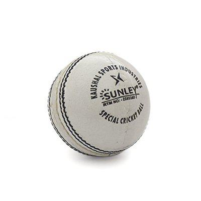 Sunley Day Night Cricket Leather Ball (white)