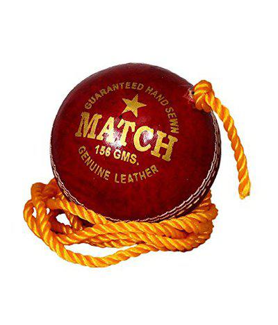 Tima 21199167251 Blend Knocking Ball Cricket Ball Hanging and with Cord for Batting Practice Size:5.5 Diameter 2.5 cms