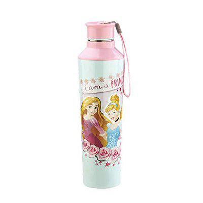 Jayco Disney Princess Elements 800 Cartoon Character Insulated Water Bottle for Kids