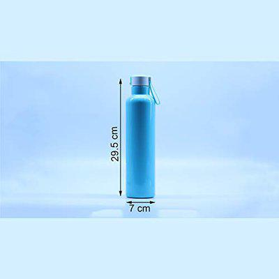 Insulated Double Wall Water Bottle Vacuum Hot & Cold with Silicon Ring with Lid | 800ML | 29.5 X 7 cm | Blue