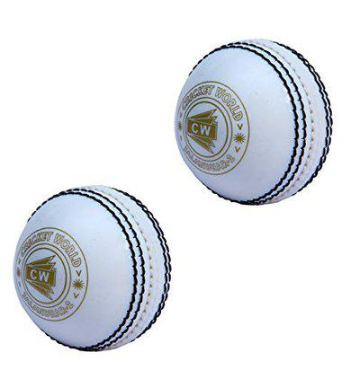 CW Spin Synthetic Cricket Ball for Practice Indoor Incredible Light Weight Boy - Men (Pack of 2, White)