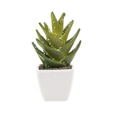 Chumbak Dewy Aloe Artificial Plant with Planter