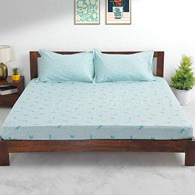 TEAL by Chumbak Turkish Cats Bedsheet - Queen Size with 2 Pillow Covers, 144TC, 100% Cotton