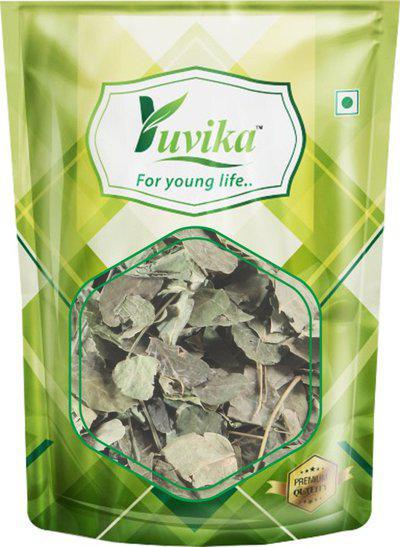 Yuvika Moringa Leaves - Moringa oleifera - Sohjana Patti (100 GM)(100 g)